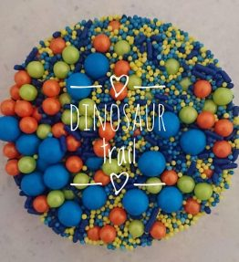Dinosaur Trail (100ml)
