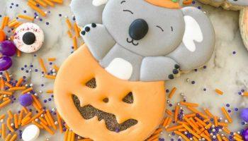 Koala in Pumpkin Cutter